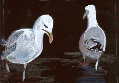 Gull's Night Out